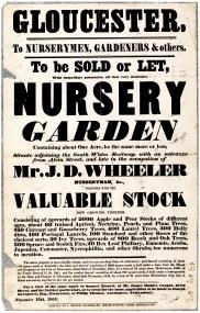 D3269 Sales particulars of nursery garden