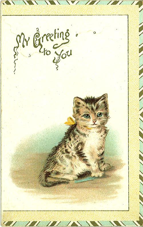 D2455-card21