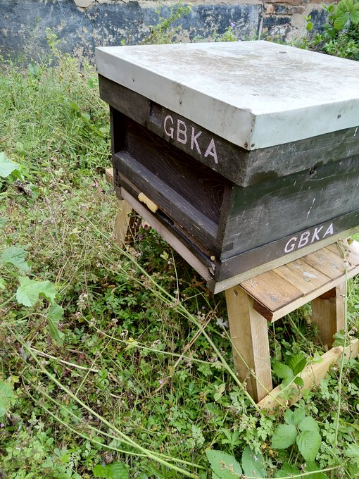 Image of The temporary beehive, safely transported from a few miles away!
