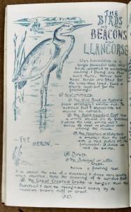 Birds of the beacons